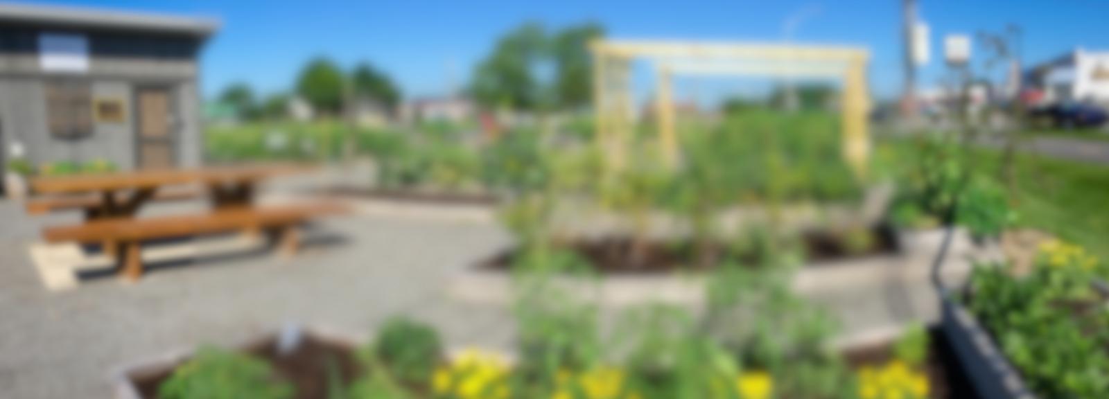 jardin-bandeau © Ville de Victoriaville