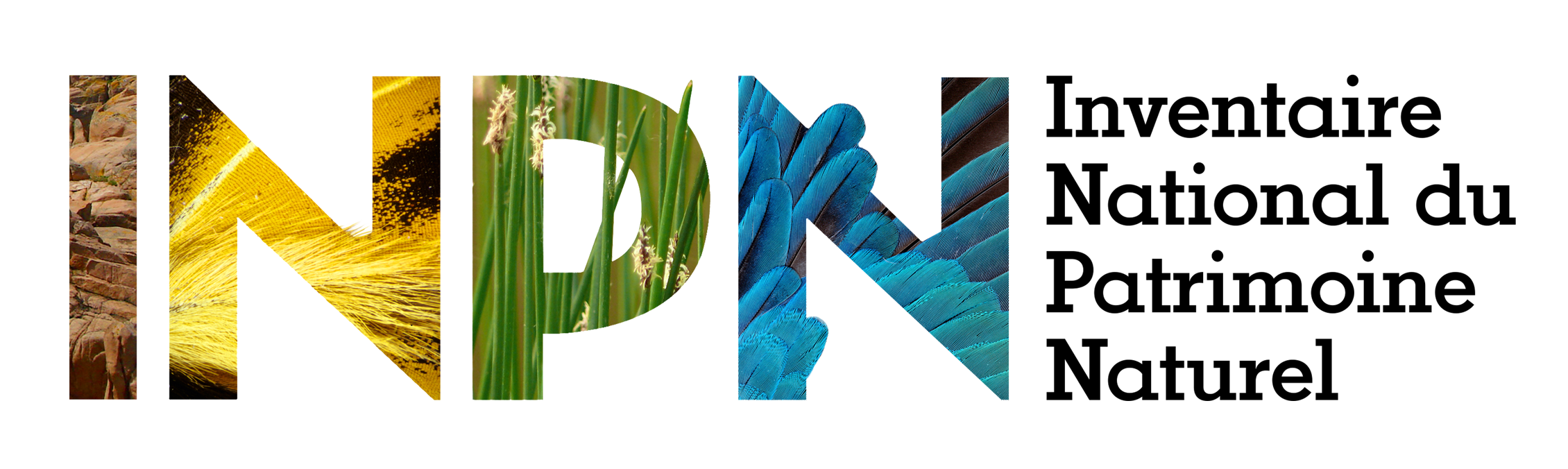 logo_inpn-l.png